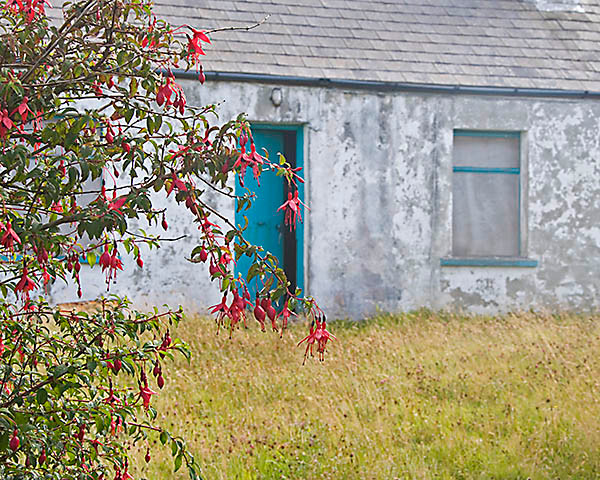 WY2T5243 