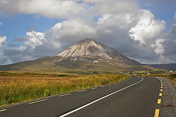 WY2T5269 
