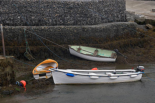 WY2T5307 