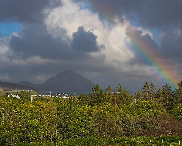 bWY2T5259 b 