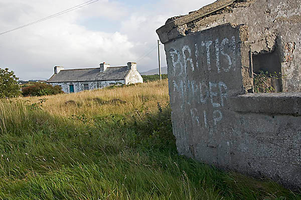 WY2T5244 